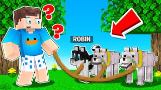 ENCONTRE O CACHORRO FALSO NO MINECRAFT!! (Esconde-Esconde)