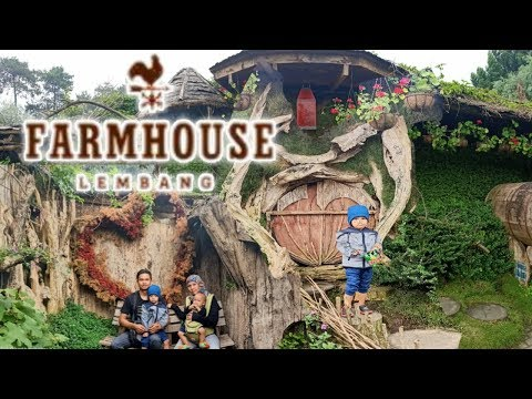 jalan-jalan-anak-balita-l-farmhouse-susu-lembang-l-hiburan-anak-balita-lucu