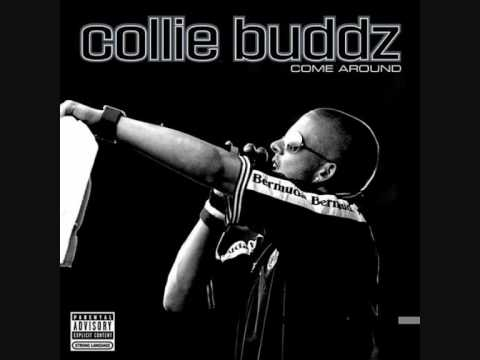 collie buddz now shes gone