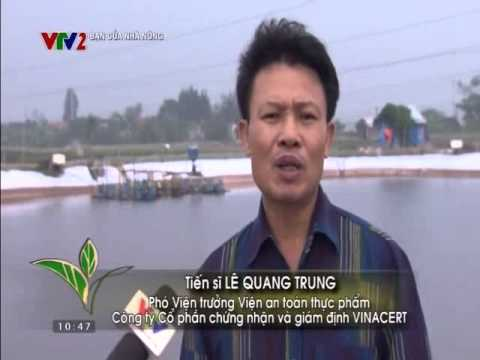 VTV2 - Bạn của nhà nông: Mô hình nuôi tôm theo VietGAP - VinaCert