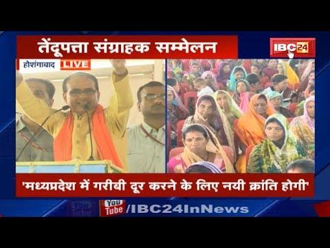 CM Shivraj Singh Speech in Pipariya, Hoshangabad MP | तेंदूपत्ता संग्राहक सम्मलेन
