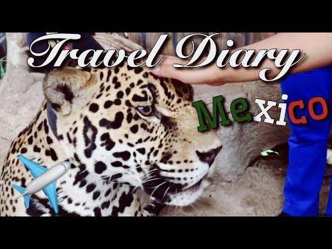 TAXCO GUERRERO | Travel Diary🌞