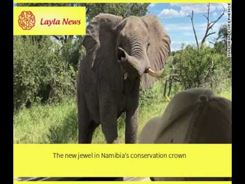 The new jewel in Namibia's conservation crown |  By : CNN