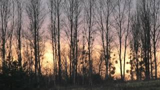Frédéric Chopin - Prélude in C Minor Op. 28 No 20