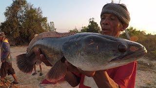 โคตปลาชะโด  หมานๆตอนแลง ลาบปลาโด สุดยอดเมนูเด็ด หาอยู่หากินแบบ วิถีอีสาน