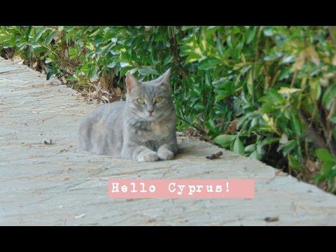 Hello Cyprus!