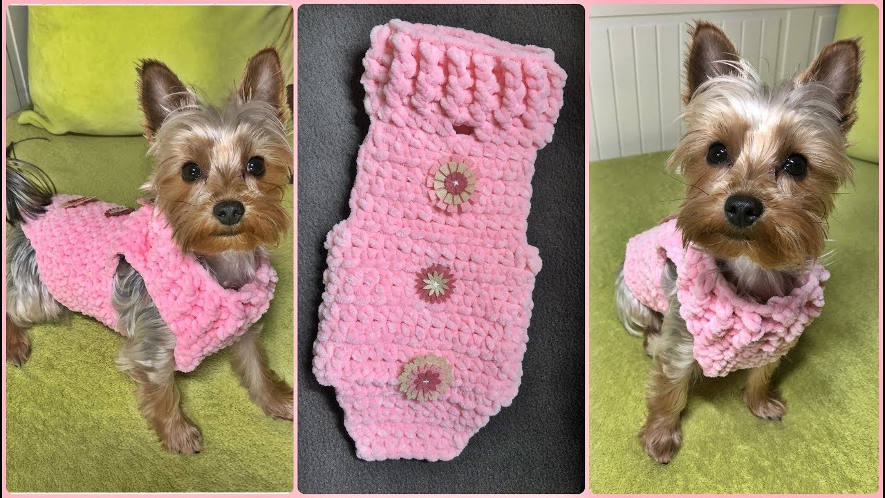 How To Crochet A Small Dog Sweater Xs 2 2kg Step By