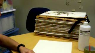 Mounting plants on herbarium sheets
