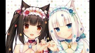 【 AMV Mix 】Девушки кошки