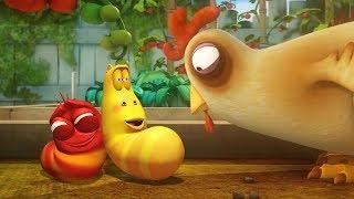 Çocuklar | Larva Çizgi film | LARVA Resmi İçin LARVA - TAVUK YEMEK | Çizgi Film | Çizgi film