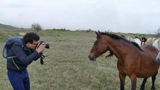 Foto safari na divljem Zapadu kod Livna - 4K