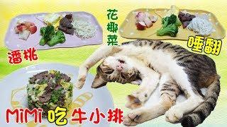 直播-MiMi醬吃頂級牛小排😮(外公贊助的🤣)全封閉式大號猫沙盆(落砂踏板💖防止帶出貓砂) thumbnail