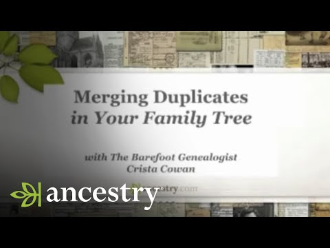 Merging Duplicates In Your Family Tree