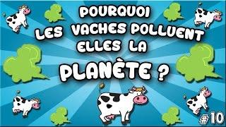 Pourquoi les vaches polluent-elles notre planète ? #10