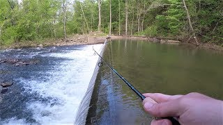 CREEK Fishing for TROUT with Spinners & Jigs