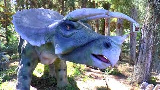 Dinosaur Jurassic world Park | Timur and Dinosaur Museum