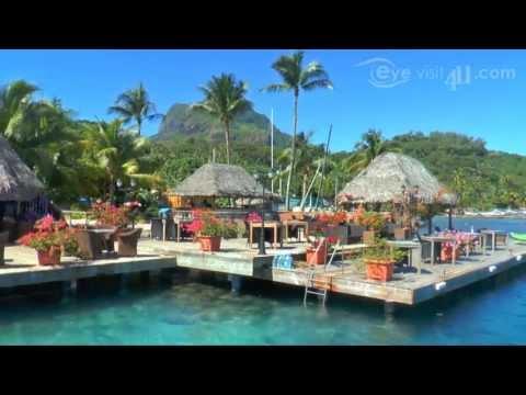 Yacht Club Bora Bora Restaurant Bar Marina Yacht Services