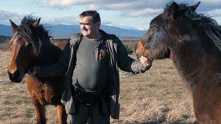 Željkova krda konja čuva satelit