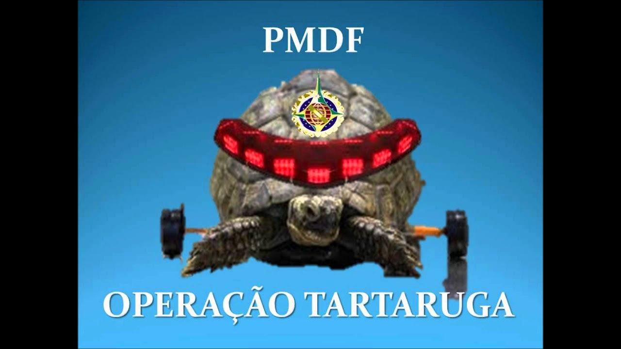 Resultado de imagem para OPERAÇÃO TARTARUGA PM DF