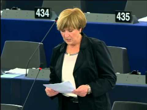 European Parliament - Debate on Sexual and Reproductive Health and Rights - 16.01.2014 - ENGLISH