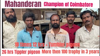 Mahandran Champion of Coimbatore Tumbler and Tippler  26 hrs birds