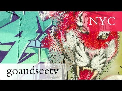 5 Pointz Tribute Tour (Graffiti/Urban Street Art)  - New York City Travel Guide