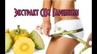Экстракт СО2 Гарцинии// Гарциния для похудения // Гарциния камбоджийская