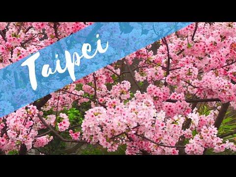 Travel Diary | Taipei, Taiwan