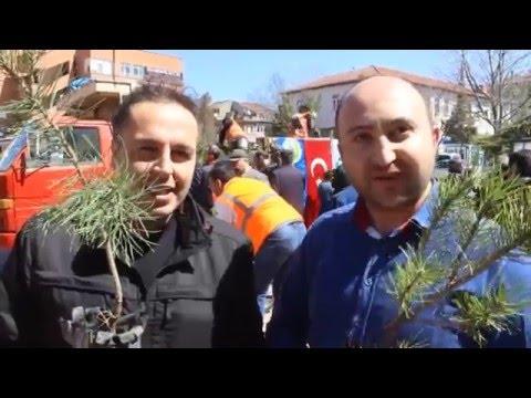 Tavşanlı'da Orman Ýşletme ve Belediye Ýşbirliği Ýle ücretsiz fidanlar dağıtılıyor