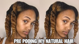 Pre Pooing My Natural Hair For The First Time Ever | Did It Work?