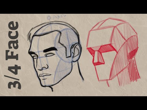 how-to-draw-3/4-view-face- -cintiq-16