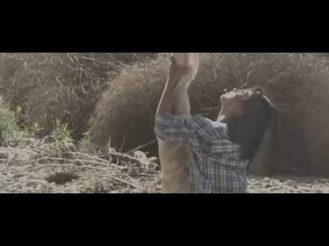 The Chain  Ingrid Michaelson  Selkie Hom  Aerial Hammock Music Video de Erin Brown