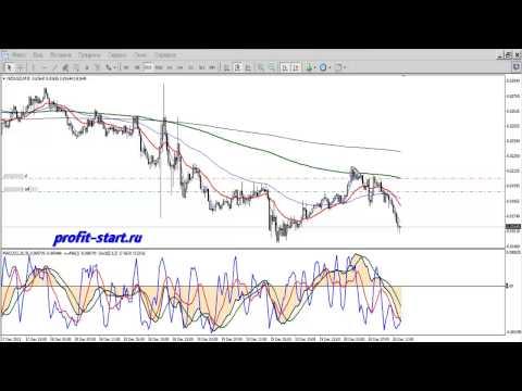 Индикатор Trend Signal