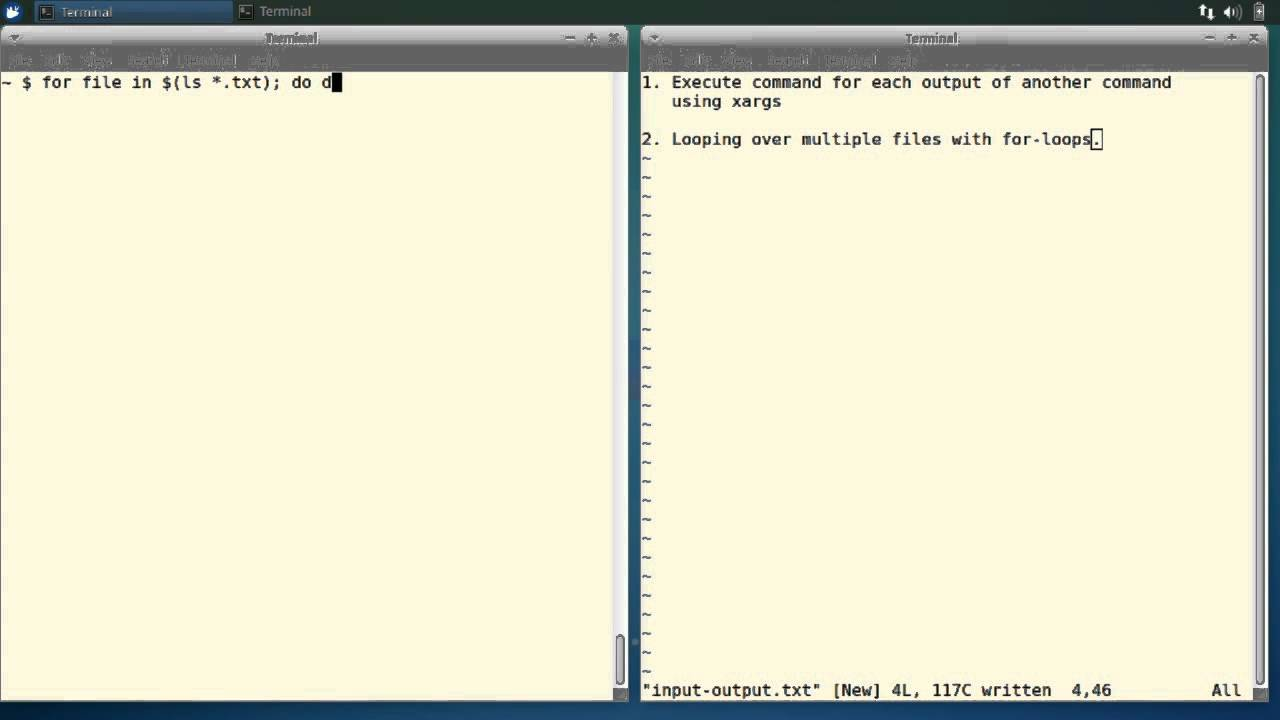 How To Repeat Commands On The Linux Terminal Using Xargs And For