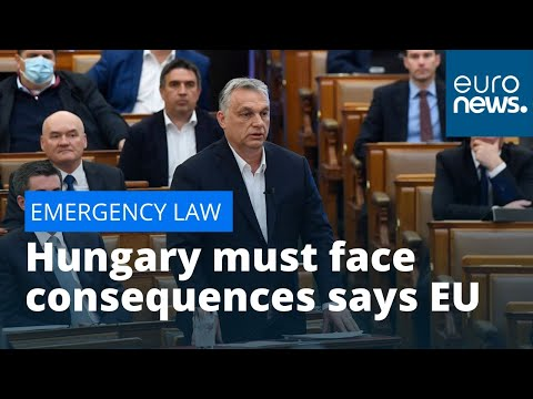 EU Hungary sanctions: MEPs say Budapest must face consequenc