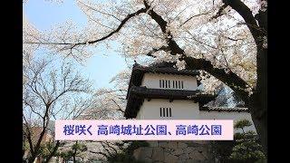 【高崎大好き No 014】 桜咲く高崎城址公園、高崎公園