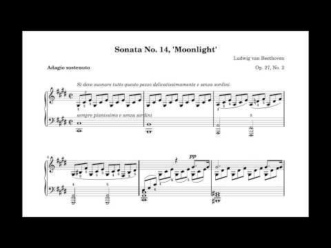 Beethoven - Moonlight Sonata 1st Movement (+ Piano Sheet PDF)