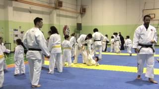 Ju Jitsu - Arte Marziale Giapponese.