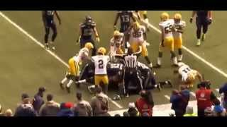 NFL Seattle Seahawks vs Green Bay Packers Highlights NFC Championship 2015
