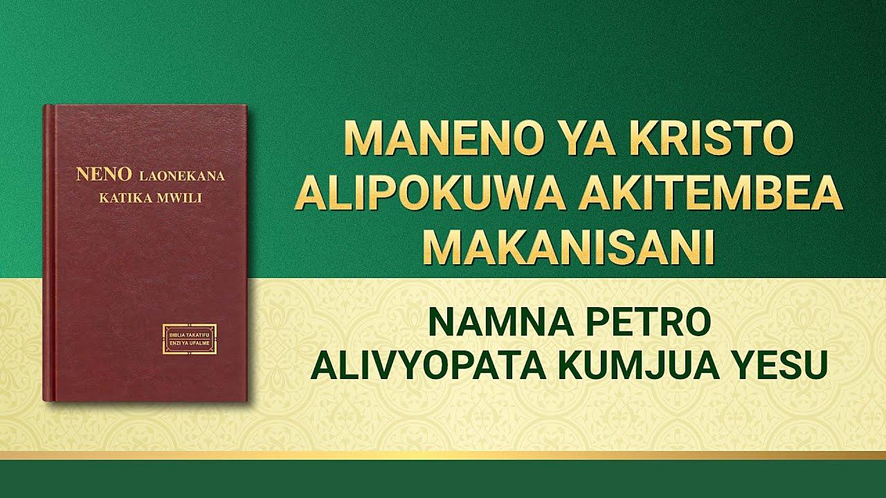 Usomaji wa Maneno ya Mwenyezi Mungu | Namna Petro Alivyopata Kumjua Yesu