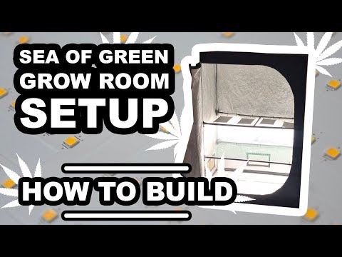 building a green screen - Myhiton