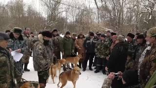 Орловская областная зимняя выставка охотн.собак 2017
