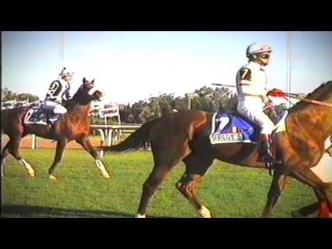 1996 GP PELLEGRINI  FREGY'S  E. TALAVERANO