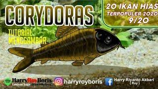 Cara Menggambar Ikan Corydoras || 20 Ikan Hias Terpopuler Saat Ini