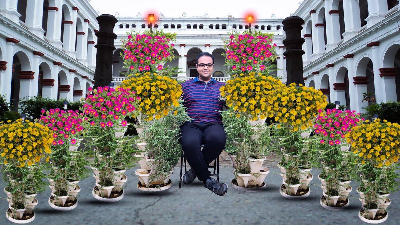 जुलाई अगस्त में लगाए जाने वाले 5 फूल + Giveaway/Top 5 Plants For July/August Indian Weather.
