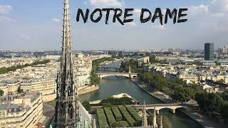 Blown Away by Notre Dame    Summer in France   Travel Vlog