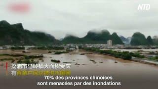 Chine les poissons annoncent ils une catastrophe naturelle ? Affrontements indo chinois@NTD Français