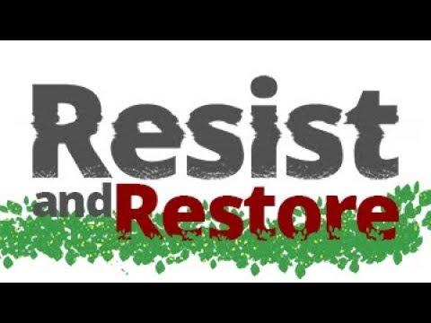The Vortex — Resist and Restore