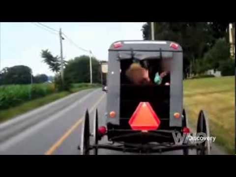 The Amish Mafia