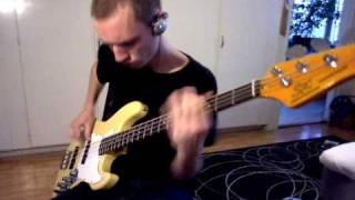 Desecration Smile - Red Hot Chili Peppers - Bass Cover